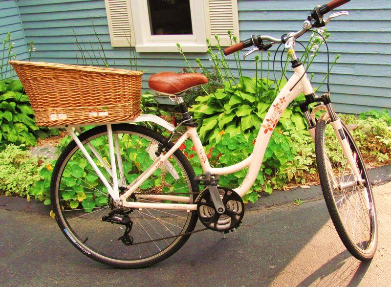 Bike Blog_photos_7-31-2010 II